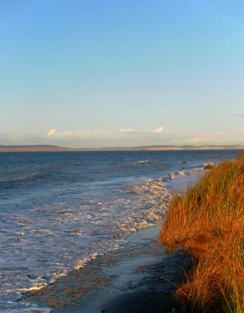 North Beach, Port Townsend,WAby Sheilan